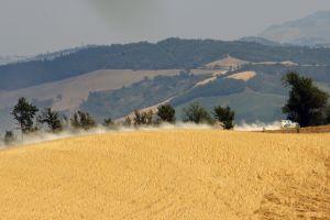 IRC San Marino 2012